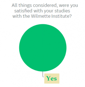 """Piechart showing all respondents respondent """"yes"""" to Question about overall satisfaction"""