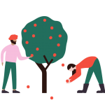 Illustration showing community members harvesting fruit from a tree